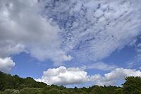 Cirrus and cumulus clouds against a blue sky