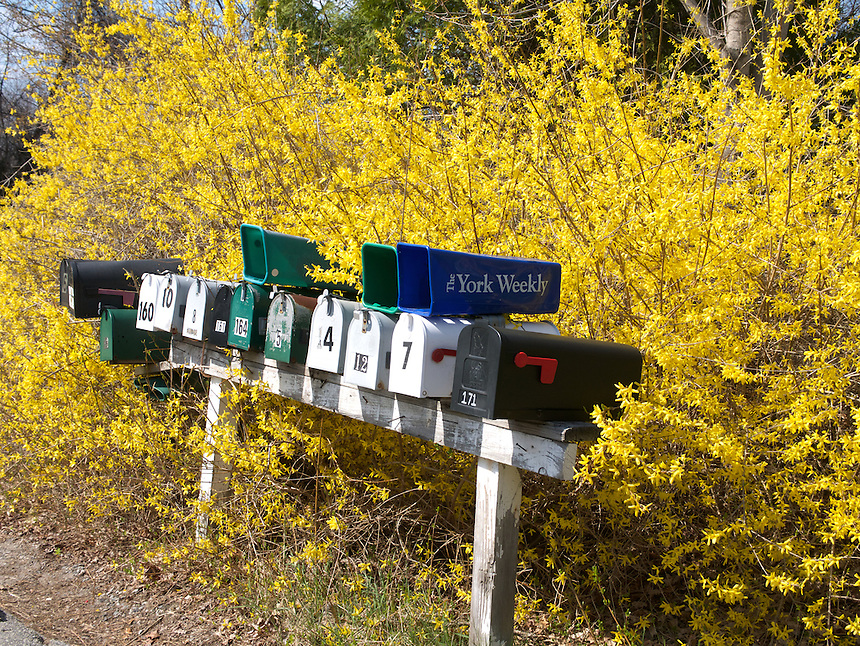 Mailboxes, York