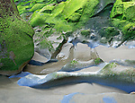 Abstract Design of Tidal Rocks, Moss, and Sand, Short Sand Beach, Oswald State Park, Oregon Coast