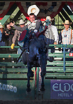 Tim O'Connell won the night's Bareback Bronc Riding event during the Reno Rodeo on Sunday, June 23, 2019.