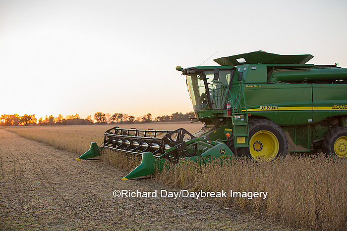 63801-07113 Farmer harvesting soybeans at sunset, Marion Co., IL