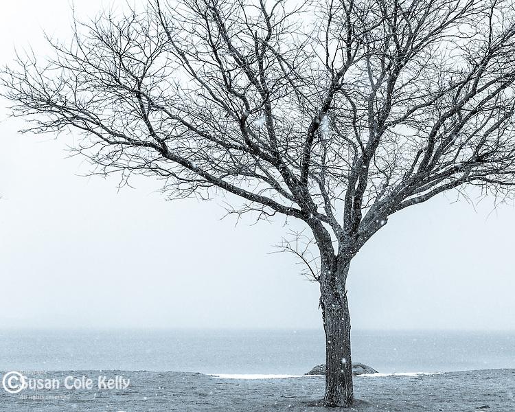Winter view from Carson Beach, Boston, Massachusetts, USA