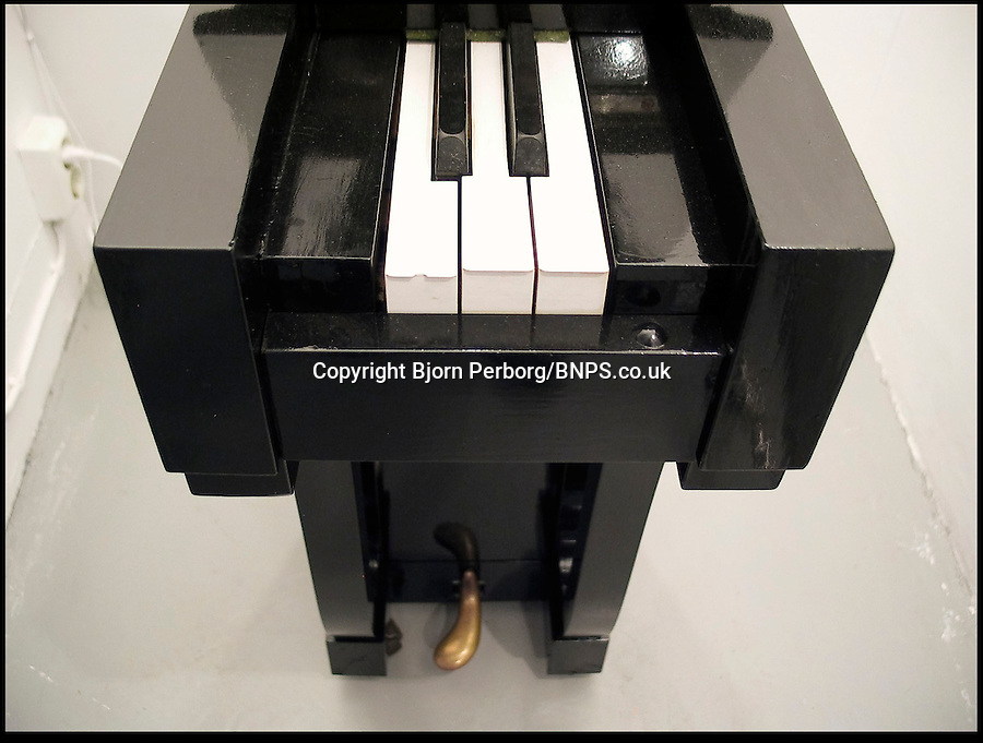 BNPS.co.uk (01202) 558833.Picture: Bjorn Perborg/BNPS.co.uk..Chopin half! This grand piano could be the narrowest in the world but pianists won't have the chance to play a waltz or a sonata - as it has just five keys. With notes in C, C sharp, D, D sharp and E, composers would struggle to come up with a classic for this instrument. The 3.5ft tall organ was created by sculptor Bjorn Perborg, who took a saw to a grand piano that was being thrown away. He recently sold the piano at an exhibition for £2,400 to a museum.