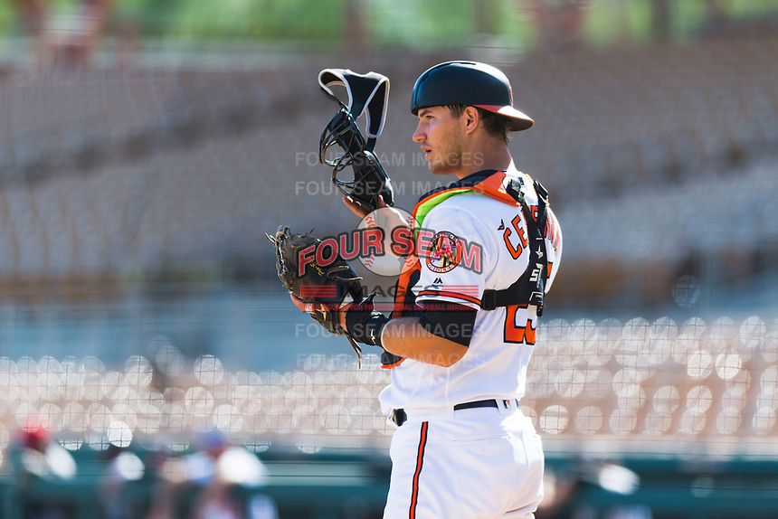 Glendale Desert Dogs catcher Martin Cervenka (25), of the Baltimore Orioles organization, during an Arizona Fall League game against the Scottsdale Scorpions at Camelback Ranch on October 16, 2018 in Glendale, Arizona. Scottsdale defeated Glendale 6-1. (Zachary Lucy/Four Seam Images)