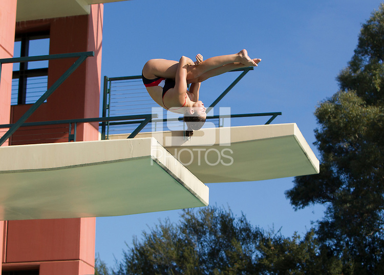 Stanford, CA - November 8, 2014.  Stanford Mens and Women's Swimming and Diving vs University of Wisconsin at Avery Aquatic Center on the Stanford Campus.