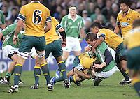 Ireland's Kieran Essex is halted during the Division A U19 World Championship clash against Australia at Ravenhill.