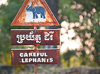 """Careful Elephants"" road signs in Angkor, Siem Reap Province, Cambodia"