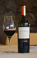Bottle and glass of Saurus Patagonia Select Merlot Bodega Familia Schroeder Winery, also called Saurus, Neuquen, Patagonia, Argentina, South America