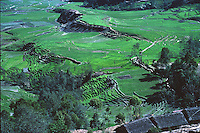 Cultivation on terraces