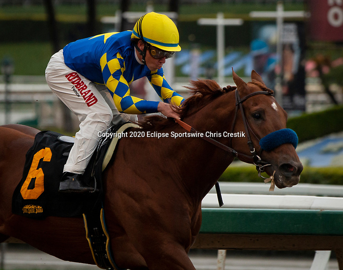 ARCADIA, CA: #6 Charlatan and Drayden Van Dyke win an allowance race at Santa Anita Park in Arcadia, California on March 14, 2020.