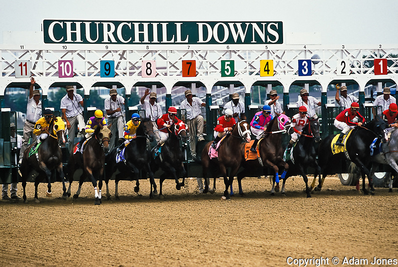 Thoroughbred race horses leaving starting gate, Churchill Downs, Louisville, Kentucky