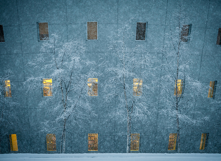 Heavy, wet snow falls on UAA's Consortium Library.