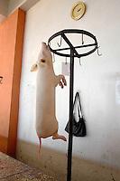 A pig hangs next to a handbag at a market in Batumi...