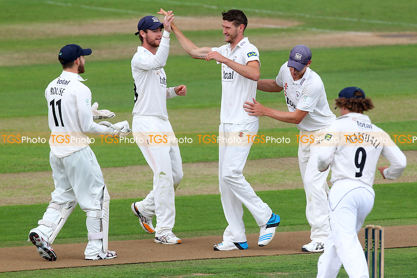 David Payne of Gloucestershire (C) celebrates the wicket of Nick Browne - Essex CCC vs Gloucestershire CCC - LV County Championship Division Two Cricket at the Ford County Ground, Chelmsford - 30/06/14 - MANDATORY CREDIT: Gavin Ellis/TGSPHOTO - Self billing applies where appropriate - contact@tgsphoto.co.uk - NO UNPAID USE