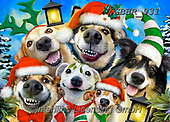 Howard, SELFIES, paintings+++++,GBHR931,#selfies#, EVERYDAY ,dogs, ,Christmas ,puzzle,puzzles