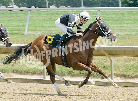 Metro Man winning at Delaware Park on 7/6/10