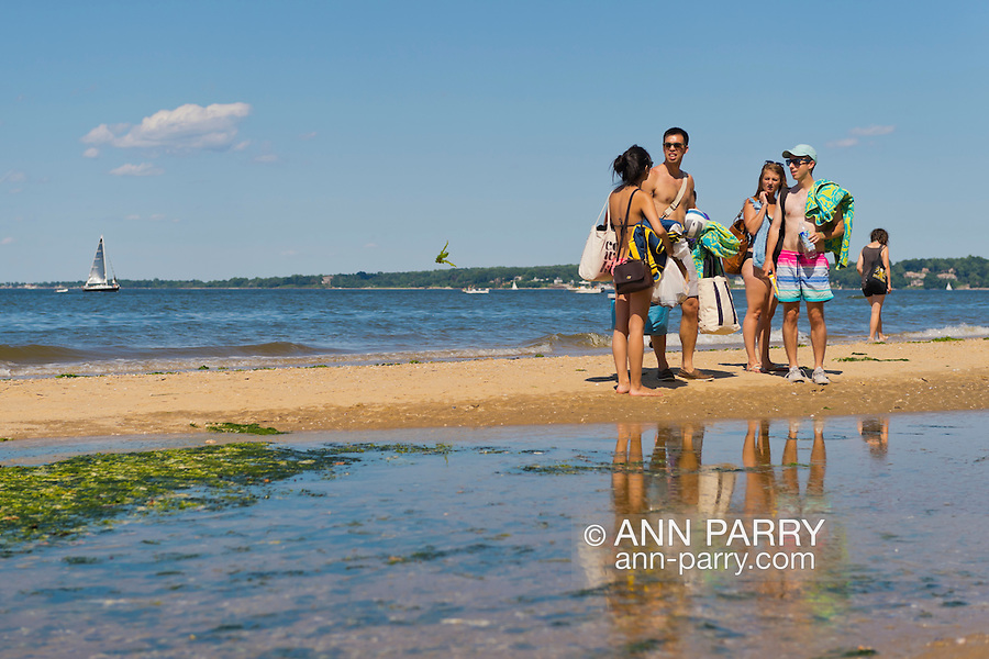 Sands Point, New York, U.S. - July 5, 2014 - Some friends at shoreline of Sands Point Preserve seem to be looking at kelp plant flying through air at left of them, during Independence Day holiday weekend, on the Long Island Sound Gold Coast. The public beach had many visitors this Saturday of the long holiday weekend when sunny warm weather arrived after the rainy July 4th.