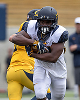BERKELEY, CA - April 22, 2017: Cal Bears Football Spring Game