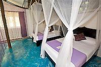 RD- La Zebra Hotel, Tulum Mexico 6 12