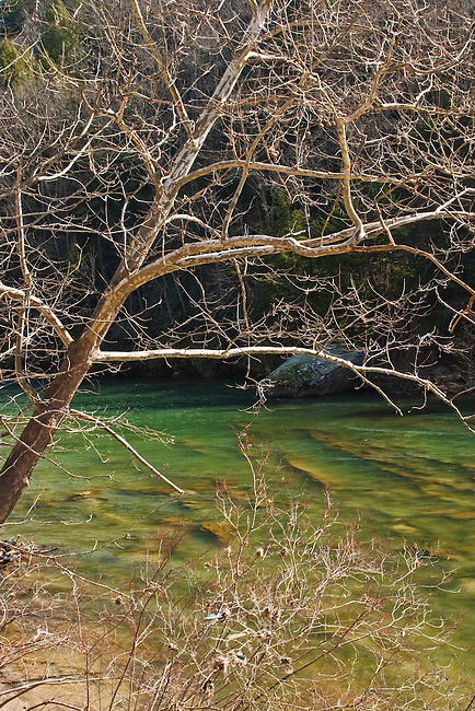 Anticipating spring along the Nolichucky River, Mitchell County