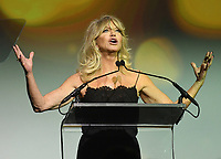 NEW YORK, NY - NOVEMBER 02: Actress Goldie Hawn speaks onstage during the Samsung annual charity gala 2017 at Skylight Clarkson Square on November 2, 2017 in New York City.  Credit:  George Napolitano/MediaPunch