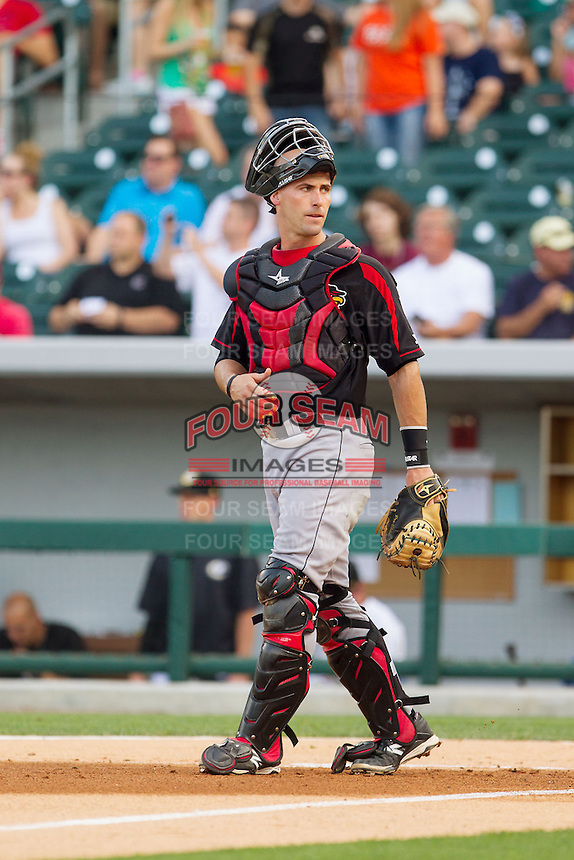 Rochester Red Wings catcher Eric Fryer (25) on defense against the Charlotte Knights at BB&T Ballpark on June 5, 2014 in Charlotte, North Carolina.  The Knights defeated the Red Wings 7-6.  (Brian Westerholt/Four Seam Images)