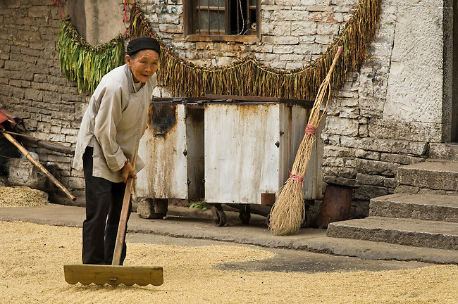 Dried corn offers variation from rice diet, China