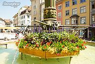 Image Ref: SWISS050<br /> Location: Schaffhausen, Switzerland<br /> Date of Shot: 20th June 2017