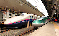 "E5 Green Shinkansen for Tohoku ""Hayabusa"" and E2 White and blue shinkansen of Tohoku ""Hayate"" are parking at Tokyo station to wait for pasengers to board."