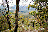 Image Ref: YR131<br />