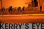 TOP OF THE DOGS: Winner of the 2008 Paddy Byrne Memorial Sweepstake Final was Praematurus No.2, in 2nd was Razldazl Denys No.3 and 3rd was Inishowen Hawk No.1 at the Kingdom Greyhound Stadium on Friday.   Copyright Kerry's Eye 2008