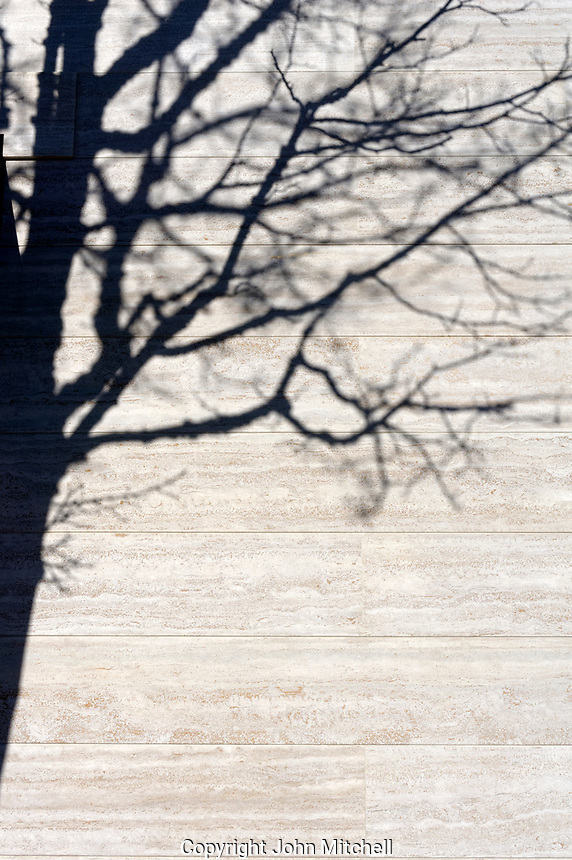 Shadow of a leafless deciduous tree cast on a stone wall of a building