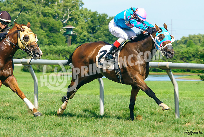 Elusive Joni winning at Delaware Park on 8/15/16