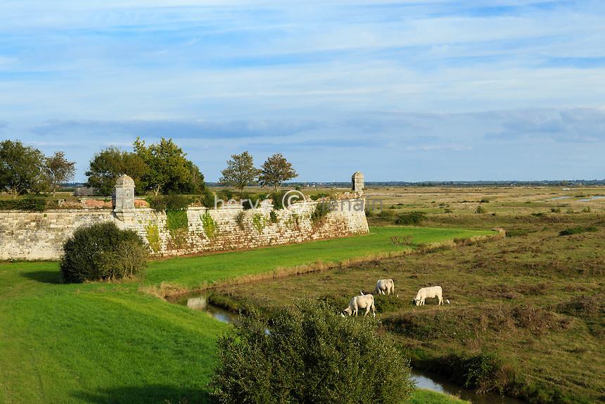France, Charente-Maritime (17), Hiers-Brouage, citadelle de Brouage, remparts et guérites // France, Charente Maritime, Hiers Brouage, Citadel of Brouage, walls and turrets