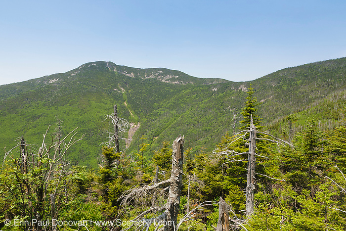 Mount Osceola from an unnamed peak in the White Mountains, New Hampshire USA. Mount Osceola is named after a Seminole chief. This area was logged during the Mad River Logging Era.