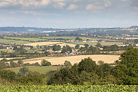 Gloustershire farmland <br /> ©Tim Scrivener Photographer 07850 303986<br />      ....Covering Agriculture In The UK....