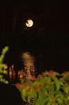 Moonlit Bon Festival Lanterns
