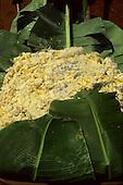 A-Ukre Village, Xingu, Brazil. Grated manioc (madioca, cassava; Manihot esculenta) on banana leaves.