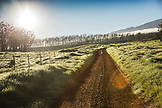 USA, Hawaii, The Big Island, Mana Road landscape, mountain bike
