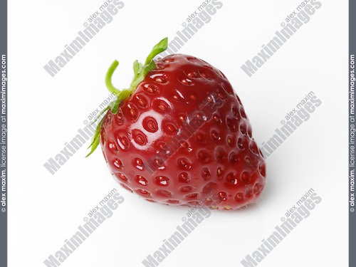 Closeup of a red organic homegrown strawberry isolated on white studio background