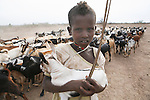 Northern Ethiopian people are nomadic and live from livestock farming or in a village. Girls are responsible for herding sheep, goats and camels to the pastures while men provide protection.