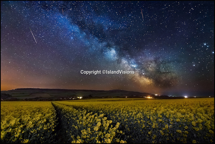 BNPS.co.uk (01202 558833)<br /> Pic: IslandVisions/BNPS<br /> <br /> A rapeseed field below a starry sky in Chale on the Isle of Wight.