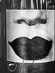 Print of lips and nose