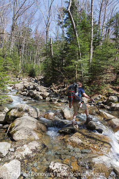 A hiker crossing Twin Brook along Franconia Brook Trail in the Pemigewasset Wilderness, New Hampshire. At 45,000-acres, the Pemigewasset Wilderness is the largest of the six designated wilderness areas in the White Mountain National Forest. Wilderness areas are governed under the National Wilderness Preservation System and the Wilderness Act of 1964.