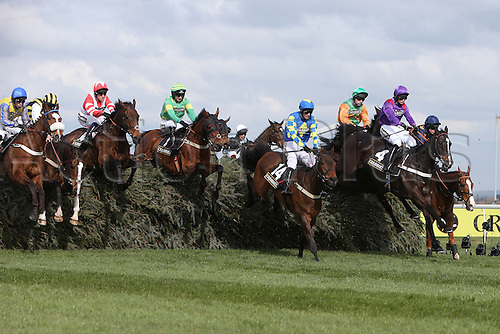08.04.2016. Aintree, Liverpool, England. Crabbies Grand National Festival Day 2.The leaders of the JTL Melling Steeplechase clear the final fence with Mr Moonshine ridden by Danny Cook ahead.
