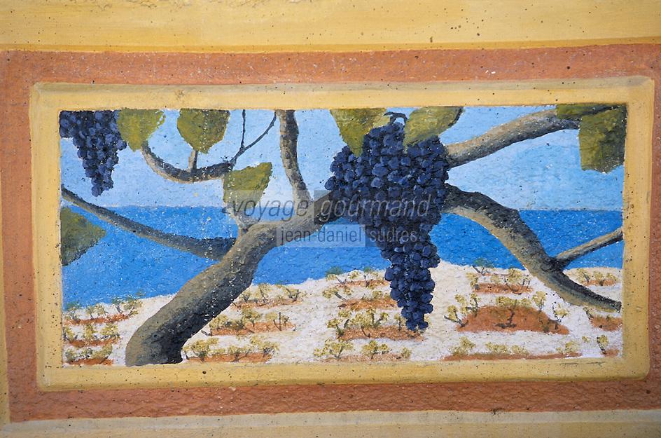Europe/Croatie/Dalmatie/Primosten: Dans les ruelles  du village enseigne d'un  caveau de vigneron représentant le vignoble  de Karst