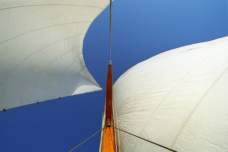 Looking up a wooden mast at the number one genoa and the mainsail.