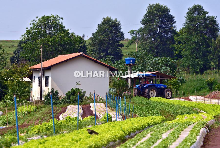 Casa rural e plantaçao de hortaliças em Xambre, Parana. 2017. Foto de Olga Leiria
