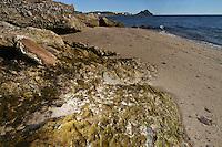 Beach sand on the coast and Sea of Cortez.Arena de playa en el litoral y mar de Cortez.*Monday*06*/feb/201*.***photo:staff/NortePhoto**.*No*sale*to*third*