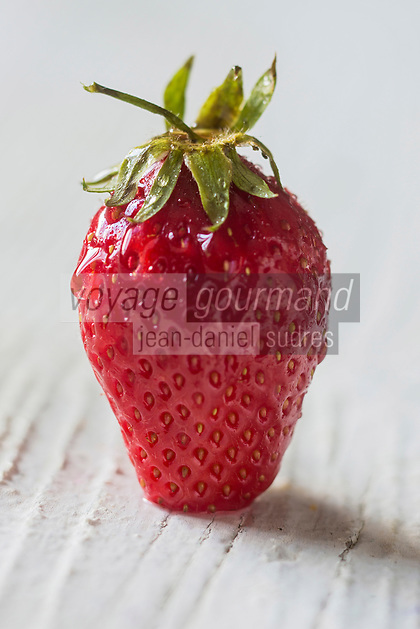 Gastronomie Générale/ Fraise guariguette //  Woodland strawberry, Fragaria vesca